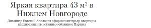 dizajner_interer_apolonov8_