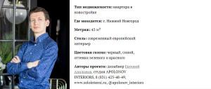 dizajner_interer_apolonov9