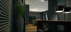 interior_honey9